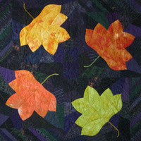 Autumn Splendor II